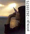 東北を観光する女性 26239575
