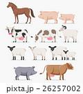 動物 ベクタ ベクターのイラスト 26257002