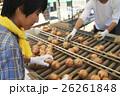 農業体験をする若者 26261848