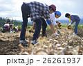 農業体験をする若者 26261937