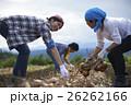 農業体験をする若者 26262166
