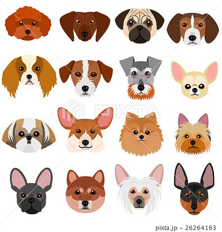 小型犬の顔セット 白背景のイラスト素材 26264163 Pixta