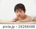 赤ちゃん 乳児 人物の写真 26266486