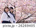 高校生と桜イメージ 26269405