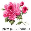 花 バラ 蕾のイラスト 26288853