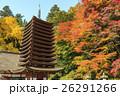 談山神社 紅葉 秋の写真 26291266
