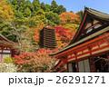 談山神社 紅葉 秋の写真 26291271