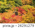 談山神社の紅葉 26291279