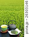 お茶 新茶 緑茶の写真 26303146