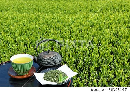 初夏 新緑の茶畑と新茶 26303147