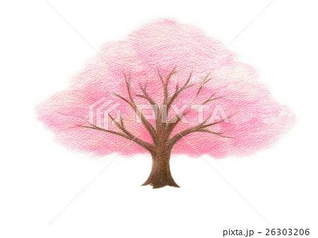 桜の木のイラスト素材 26303206 Pixta
