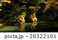 氷川渓谷 秋 紅葉の写真 26322101