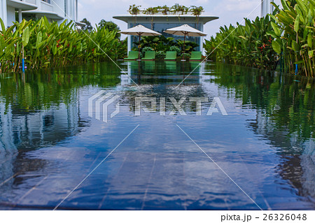 Pool area with plants 26326048 pixta for Plants for pool area