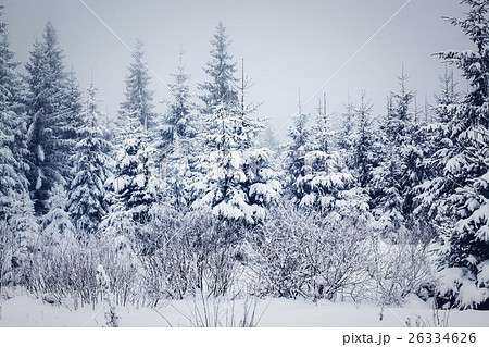 snowy winter landscape 26334626
