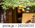 紅葉 京都 26336535