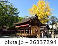 護王神社 銀杏 26337294