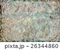 Old Mouldy Paper or Parchment 26344860