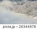 タンチョウ 樹氷 霧の写真 26344976