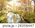 秋の奥日光 湯川 26356447