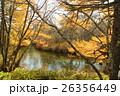 湯川 奥日光 河川の写真 26356449
