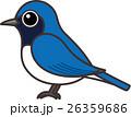 鳥 鳥類 小鳥のイラスト 26359686