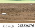阪神甲子園球場 内野グラウンド、3塁ベースと2塁ベース 26359876
