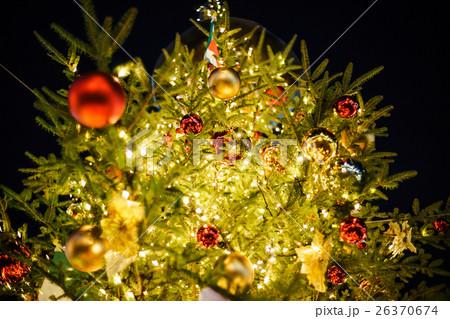クリスマスツリー 26370674