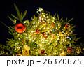 クリスマスツリー 26370675