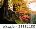 表参道 日光 紅葉の写真 26381155