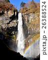華厳の滝 滝 直瀑の写真 26388524