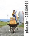 農業体験 一輪車を押す女性 ポートレート 26389644