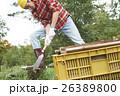 田舎暮らし のこぎりで作業する男性 26389800