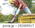田舎暮らし のこぎりで作業する男性 26389917