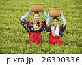 茶摘みをする日本人女性と外国人女性 26390336