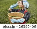 茶娘 ポートレート 26390406