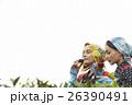日本人と外国人の茶娘 ポートレート 26390491