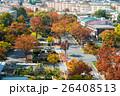 街路樹 紅葉 ケヤキの写真 26408513