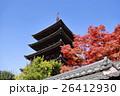 京都東山・八坂の塔 26412930