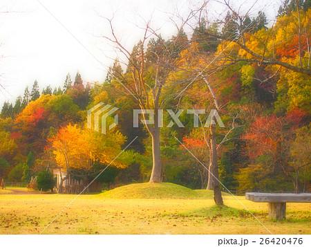 秋色 里山 26420476