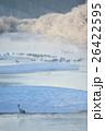 丹頂と樹氷 26422595