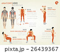 beautiful design info graphic of arm workout 26439367