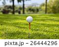 ティーアップしているゴルフボール 26444296