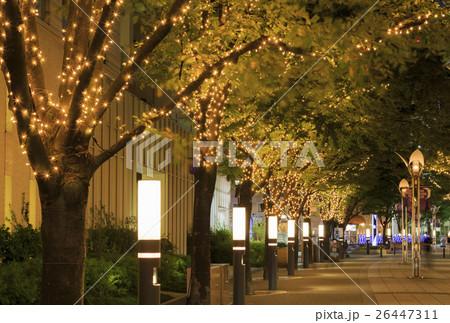 神戸ガス燈通り・イルミネーション 26447311