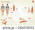 info graphic of abdominal legs workout 26453632