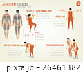 beautiful design info graphic of shoulder workout 26461382