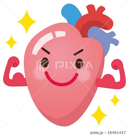 元気な心臓 26461437