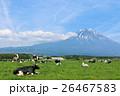 五月晴れの富士山と広大な牧場風景 26467583