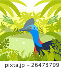 Cassowary on the Jungle Background 26473799