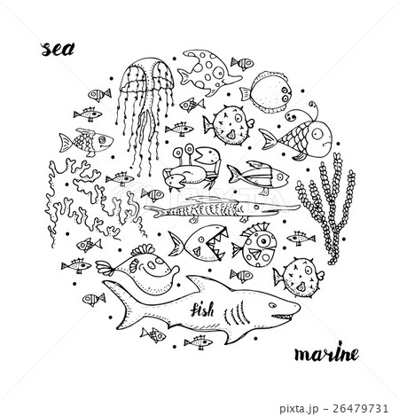 Marine life, sketch for your design 26479731
