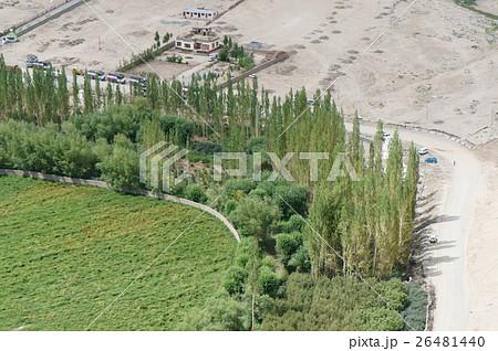 砂漠と緑の境界線 ラダック 26481440